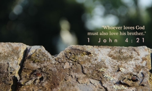 1 John 4.21